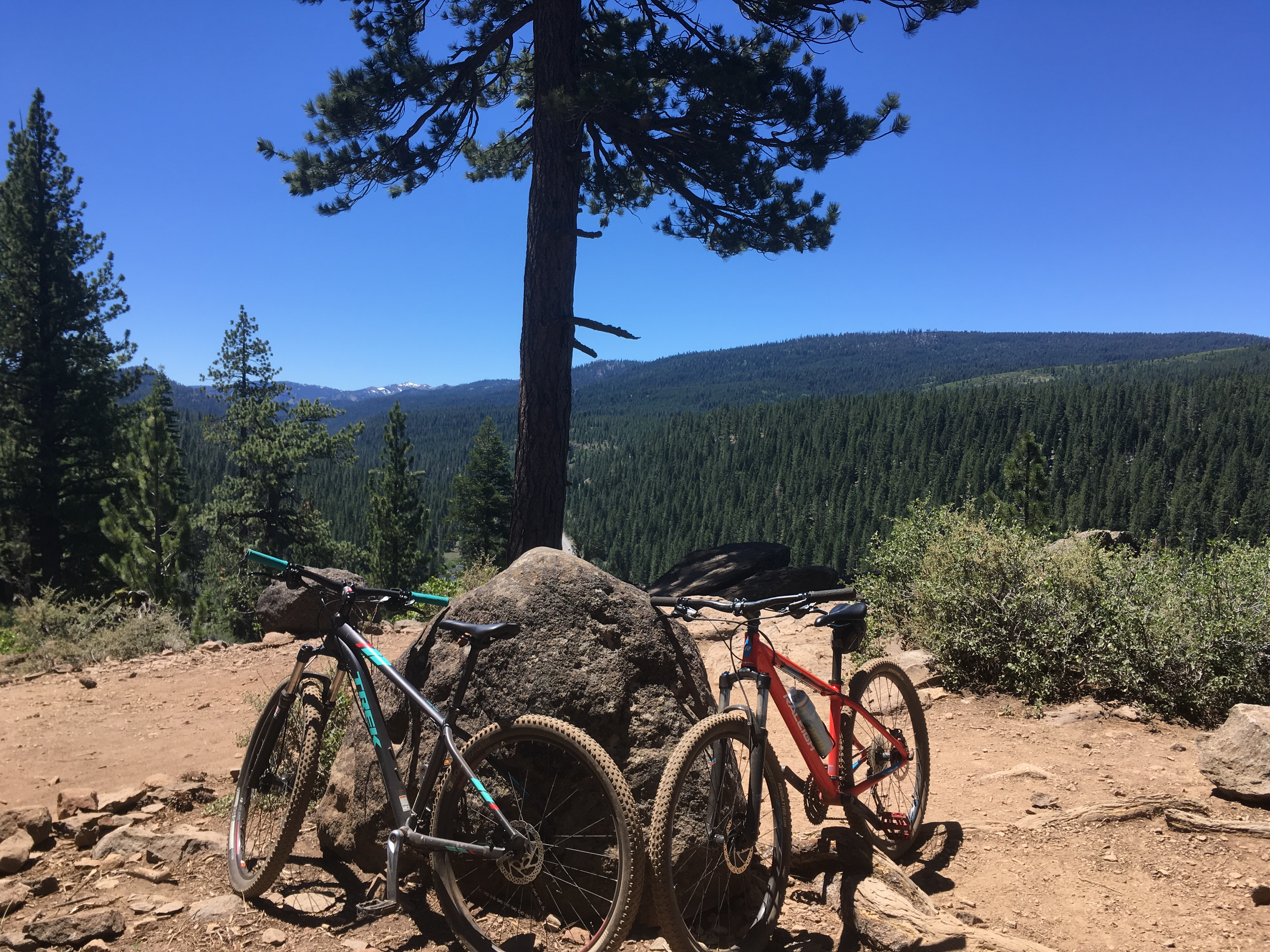 Two mountain bikes, propped up on a rock next to a trail near Truckee, California.